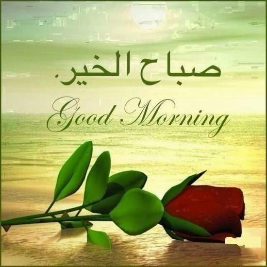 بالصور صور لصباح الخير , صبح علي اهلك واصحابك 1885 7