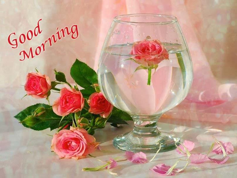 بالصور صور صباح الورد , صبح علي اصحابك بعبير الزهور 1989 2