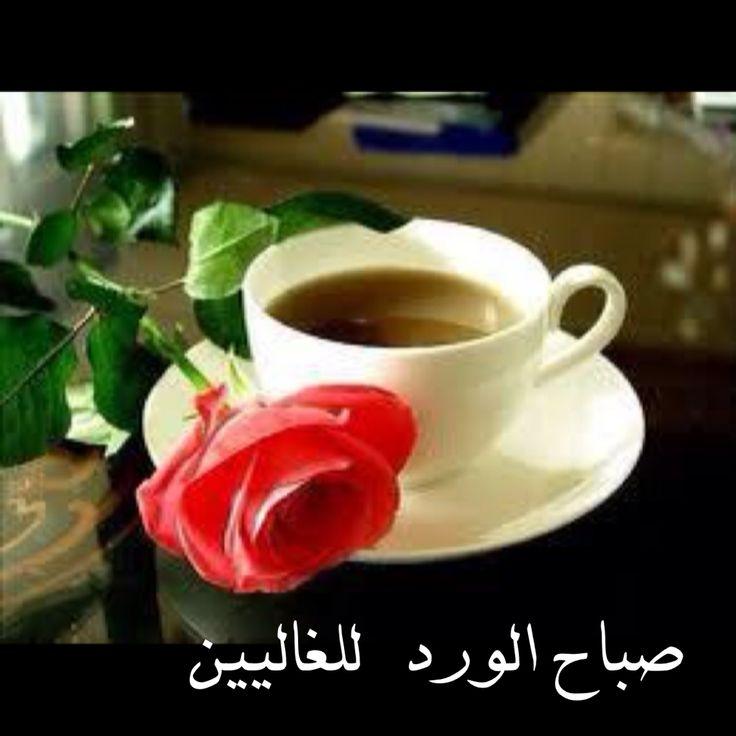بالصور صور صباح الورد , صبح علي اصحابك بعبير الزهور 1989 6