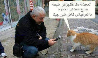 بالصور صور مضحكة جزائرية , حاسب علي قلبك من كتر الضحك 2118 3