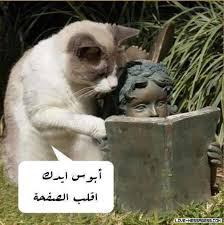 بالصور صور مضحكة جزائرية , حاسب علي قلبك من كتر الضحك 2118