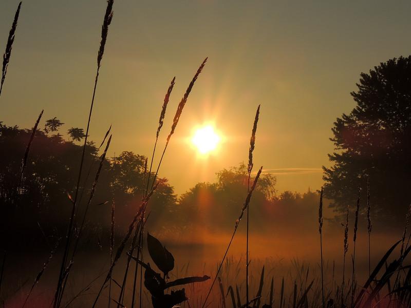 بالصور صور شروق الشمس , انظر و تامل وشوف اد اية قدرة الخالق 2172 2