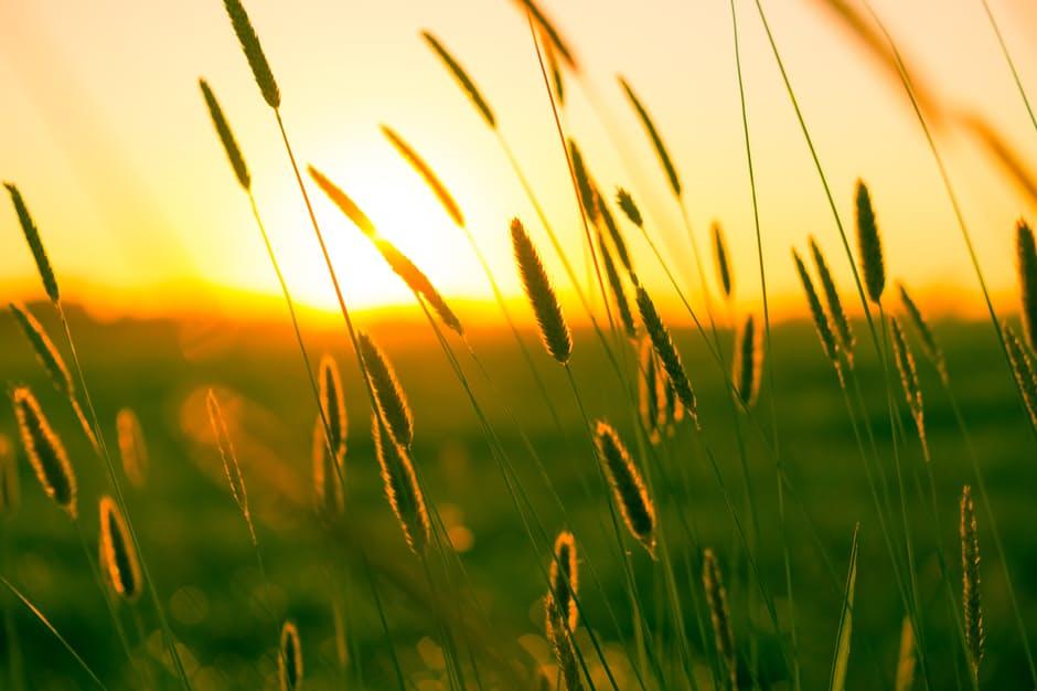 بالصور صور شروق الشمس , انظر و تامل وشوف اد اية قدرة الخالق 2172 9