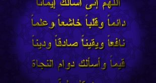 صورة صوراسلاميه جميله جدا , خلفيات دينية تبهرك عند وضعها علي الموبيل