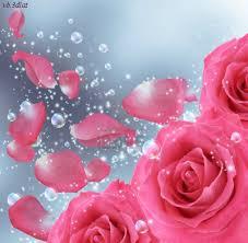 بالصور صور خلفيات ورد , غيري من شكل موبيلك بالقطات بها عبير الزهور 2316 7
