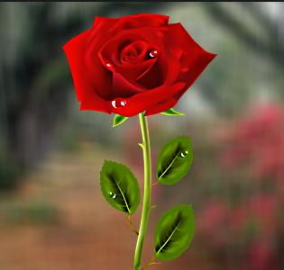 بالصور صور خلفيات ورد , غيري من شكل موبيلك بالقطات بها عبير الزهور 2316
