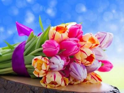 بالصور صور ورود جميله , شوف الزهور واتعلم اجمل لغة بين العشاق 2207 3
