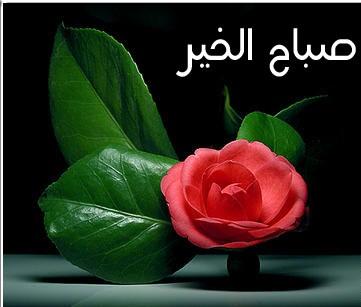 بالصور صور مكتوب عليها صباح الخير , ارسلي تحية تصبحي بها علي حبيبك 2419 5