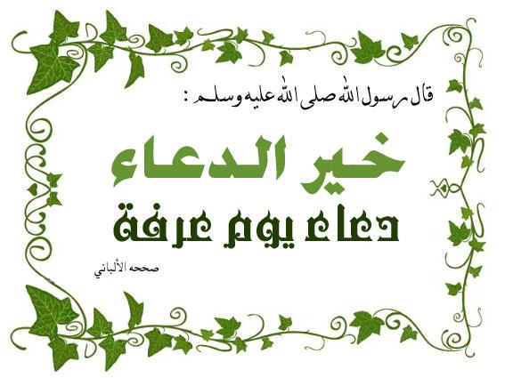بالصور صور يوم عرفه , يارب يكون لنا نصيب الوقف مع حجاجك علي جبل عرفات 2422 2