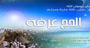 صور يوم عرفه , يارب يكون لنا نصيب الوقف مع حجاجك علي جبل عرفات