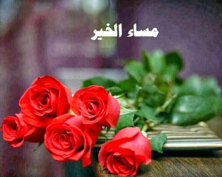 صور صور مساء النور , مسي علي الحبايب بريحة الورد