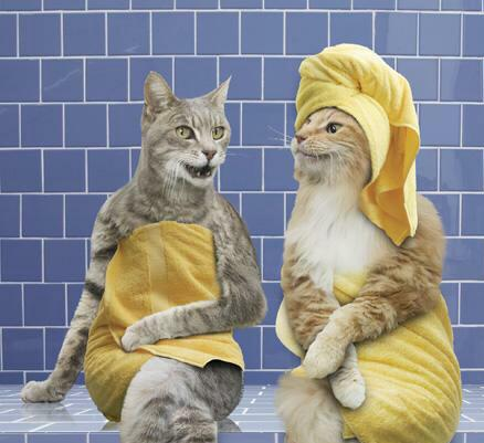 صوره صوري انا وزوجي في الحمام , اجمل صور بالحمام