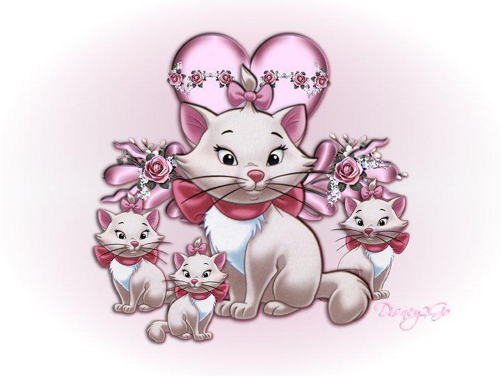 بالصور صور لولو كاتي , القطة البيضا حبيبة البنات 2627 3