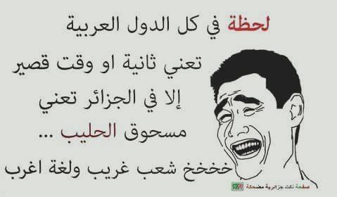 بالصور صور جزائرية مضحكة , قفشات تموت من الضحك من شعب الجزائر 2153 8