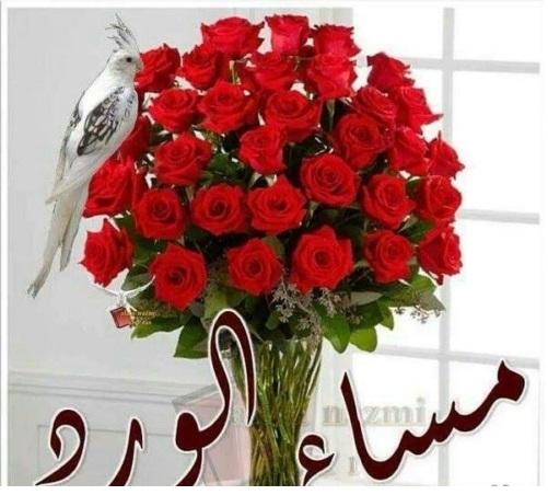 صوره صور مساء الورد , مسي علي حبيبك برائحة الزهور