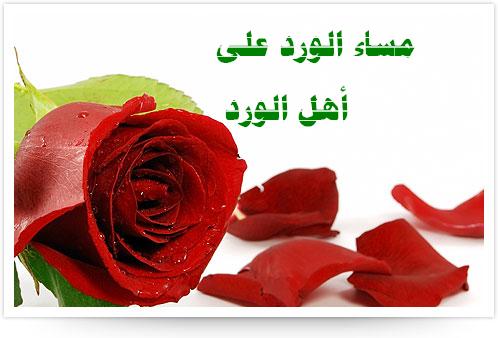 بالصور صور مساء الورد , مسي علي حبيبك برائحة الزهور 2283
