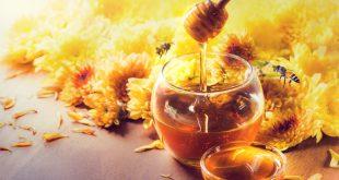بالصور تفاسير رؤى ذباب يحمل عسل , تفسير رؤية العسل فى الحلم 4389 1 310x165