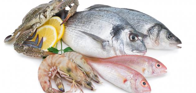 صورة تفاسير رؤى الاسماك فى المنام , ماهو تفسير السمك في الحلم لابن سيرين؟