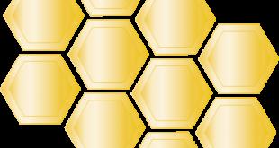رسم خلية نحل , اشكال مختلفة للاطفال لرسم خلية ومنزل النحل