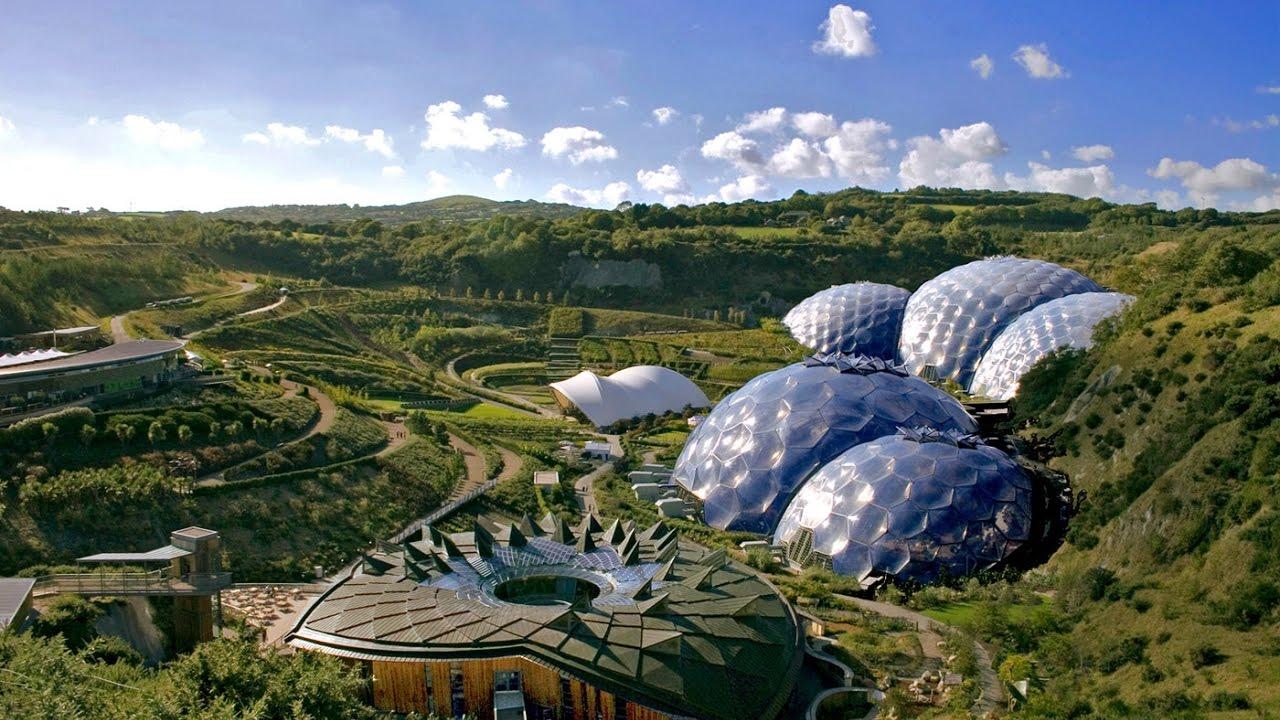 صورة اكبر غابة في العالم , تيغا وتصينفها كابر غابة فى العالم