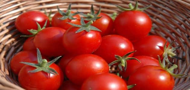 صورة تفسير الاحلام الطماطم , رؤية الطماطم في المنام