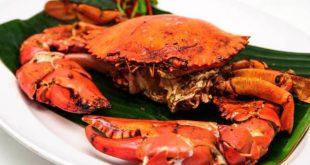 فوائد سرطان البحر , علاقه سرطان البحر بمرضي القلب
